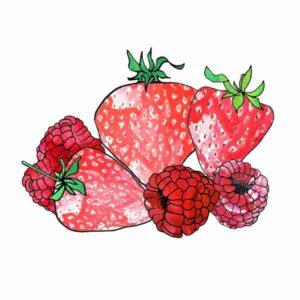 fraises-framboises