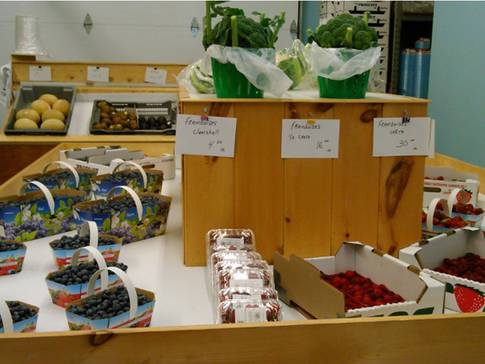 bleuetiere-de-saint-bernard-fruits-et-legumes