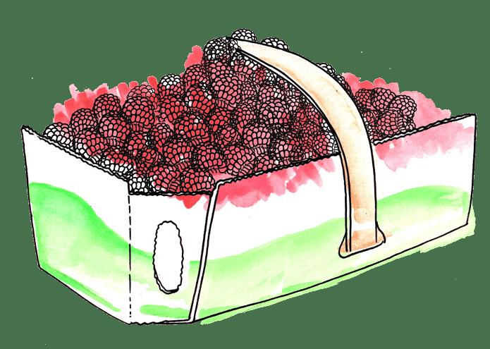 raspberry-crate