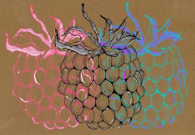 Les petits fruits font de la poésie