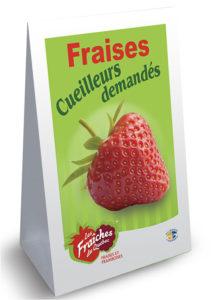 MODELE Panneau-sandwich fraise coroplast