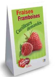 MODELE Panneau-sandwich fraise-framboises coroplast