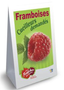 MODELE Panneau-sandwich framboise coroplast