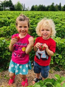 Enfants dans les champs Aux fruits de la colline